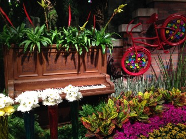 Spring Blooms: Flower Show and Hands-On Floral Design