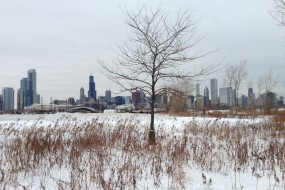 10 Ways to Have Fun in Chicago This Winter – On the Cheap